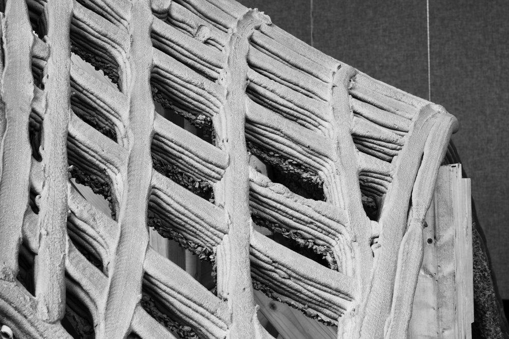 Final_Concrete_5.jpg