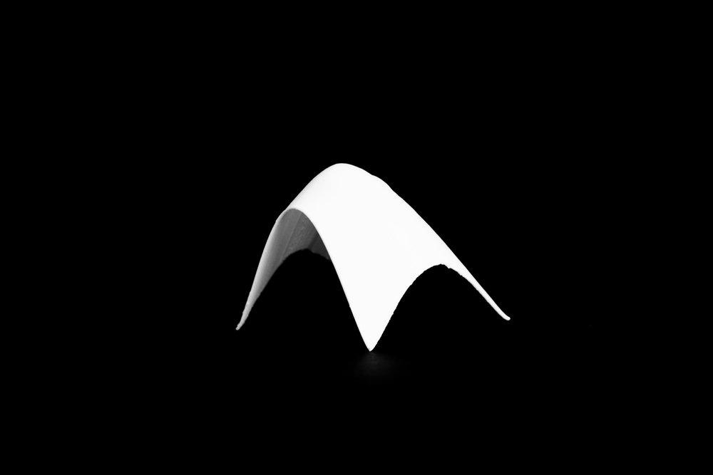 Shell_6.jpg