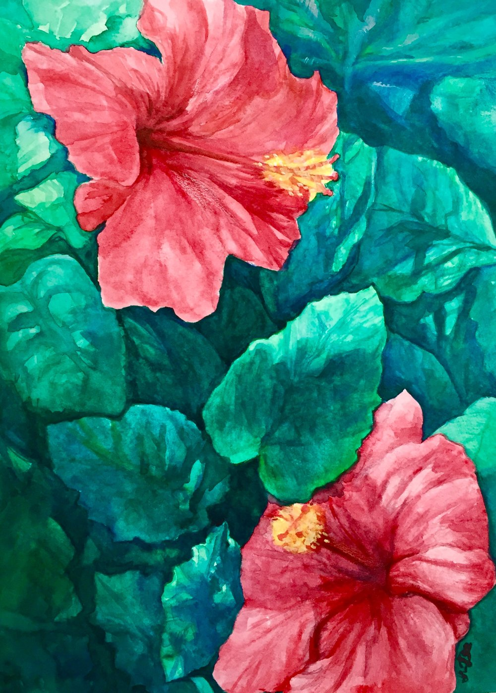 "Watercolor painting of hibiscuses on 8x10"" cold-pressed watercolor paper"