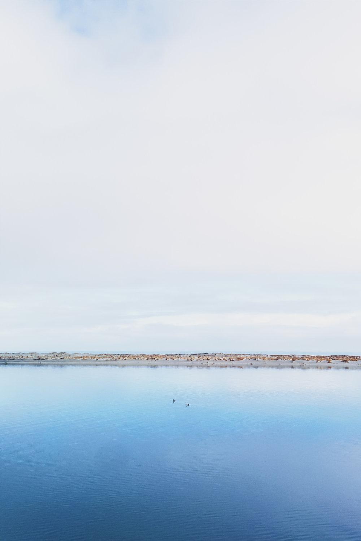 NZ site-26.jpg
