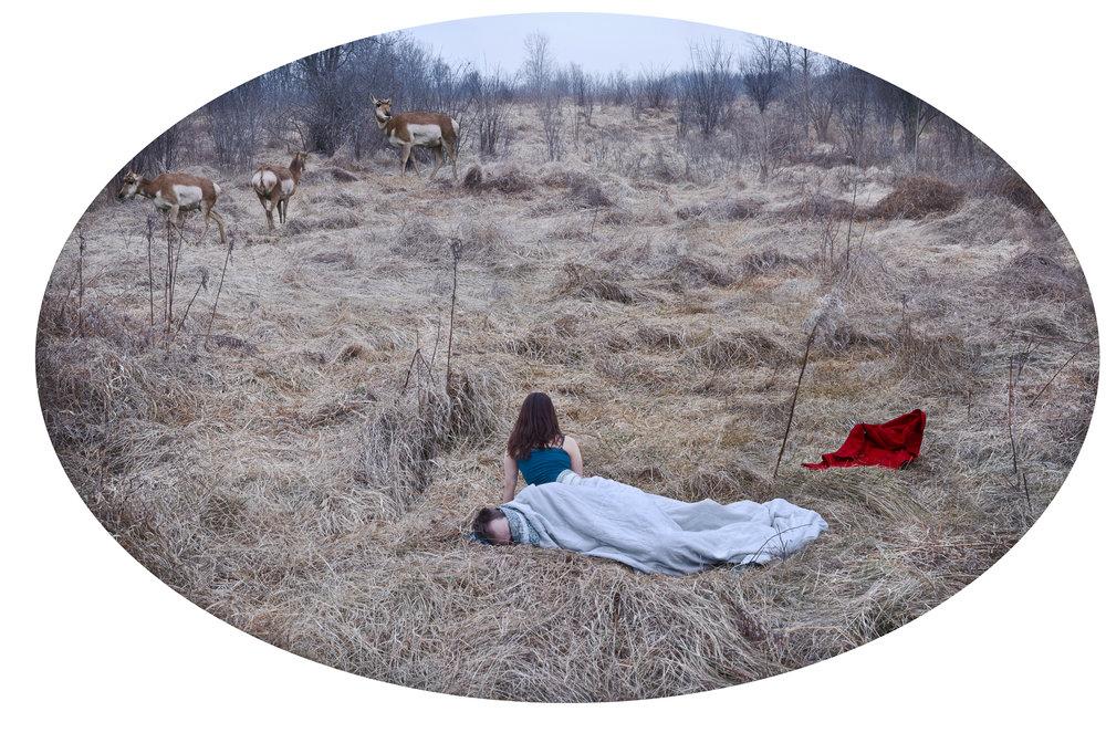 Grassland Study, 2012