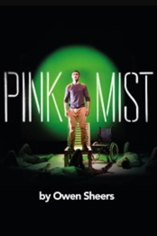 PINK MIST READING - Finty is excited to be joining Origin Theatre Company for their Monday's of May play reading series. She will be reading the role of Lisa in the New York debut of Pink Mist written by Owen Sheers and directed by Steven Ditmyer. Performance Date: Monday May 22nd 2017