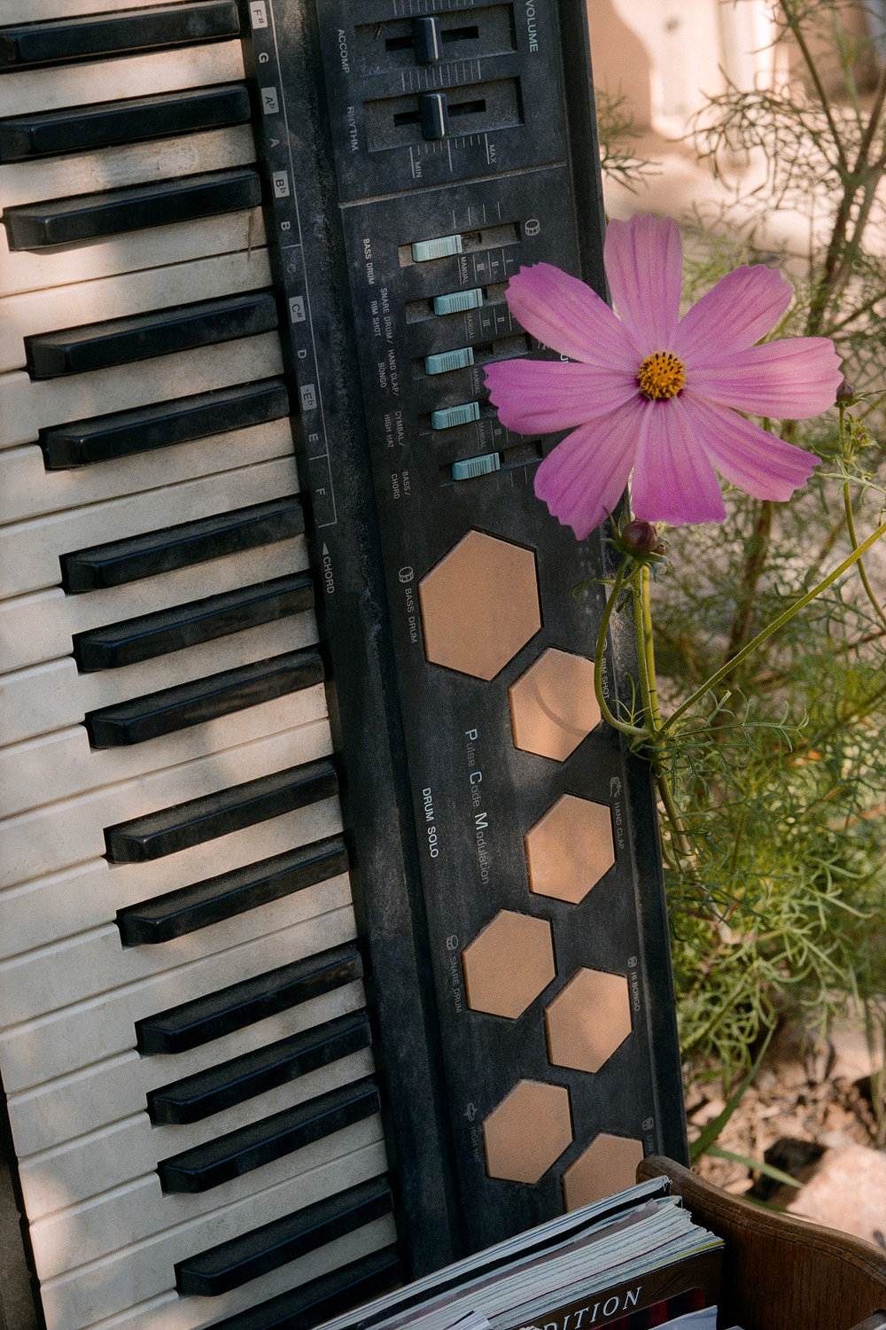 14. keyboard & flower.jpg