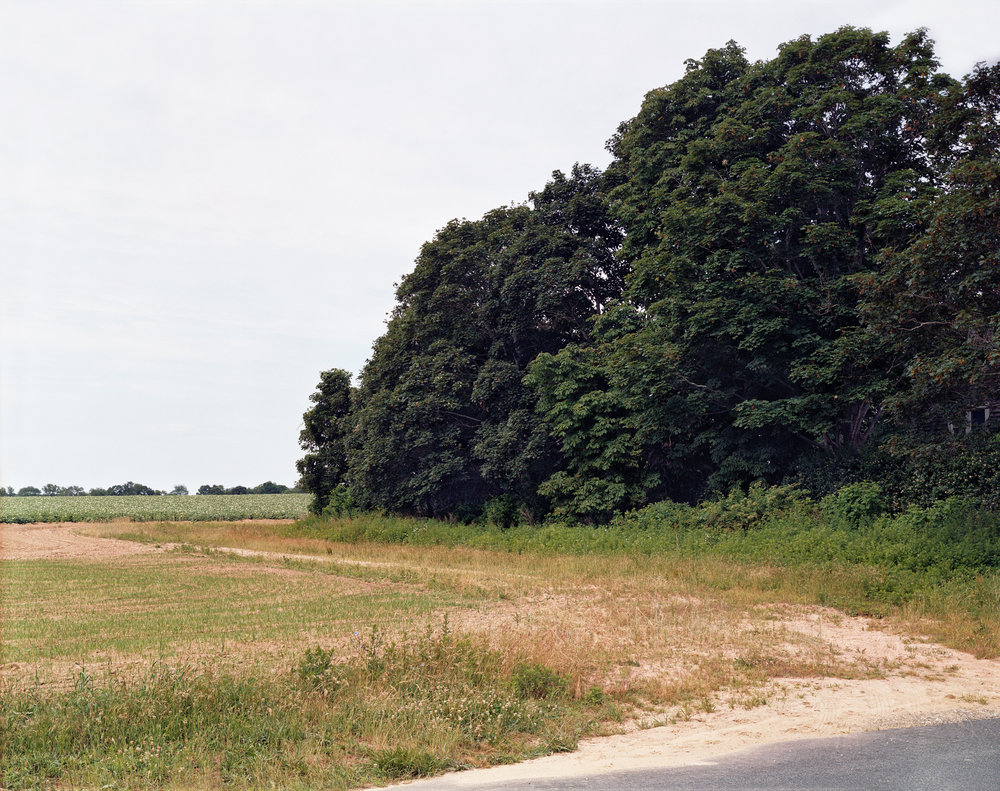 139 Landscape.jpg
