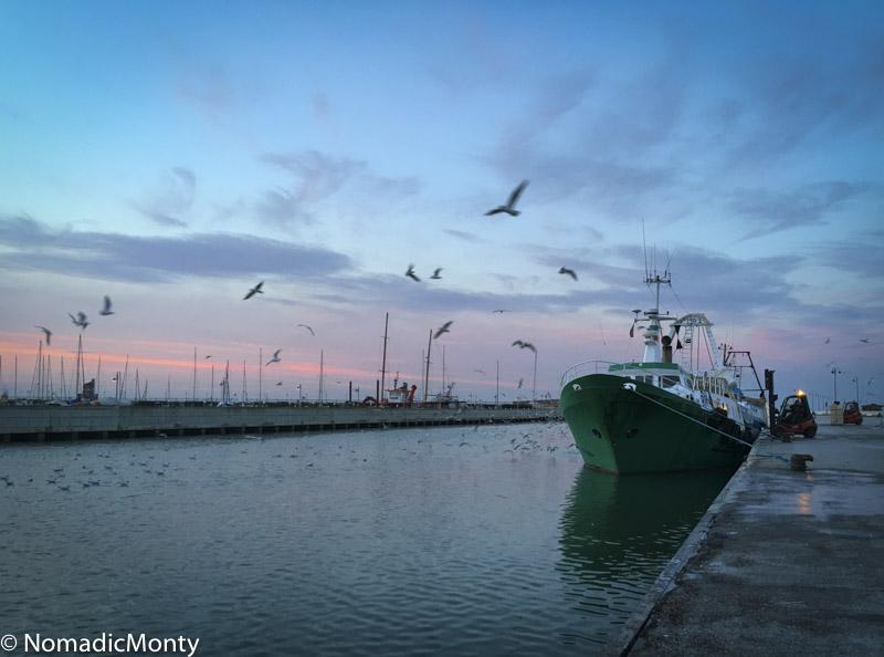 Evening Rimini-1-6