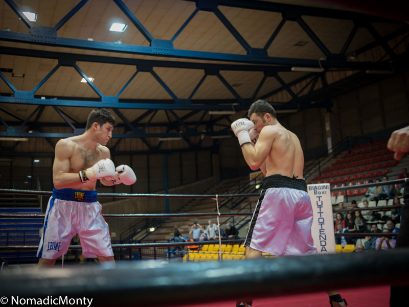 Rimini Boxing-2
