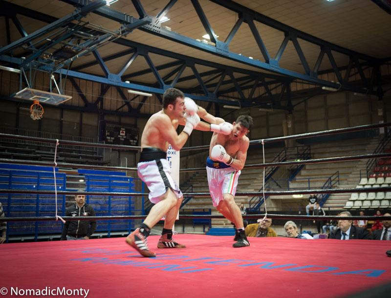 Rimini Boxing-4