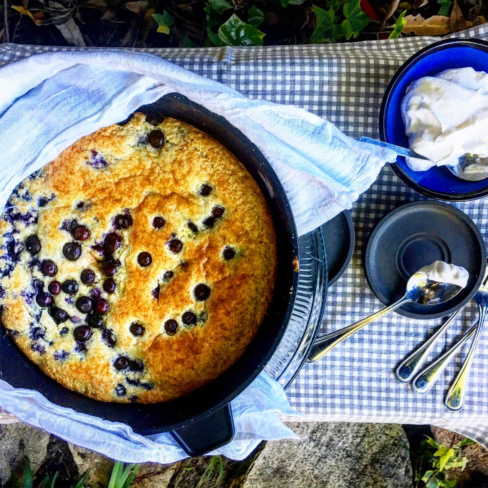 MoneyEurocast #8 blueberry sourcream cake.jpg