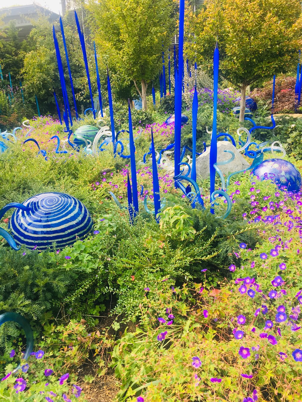 One of the beautiful glass-blown gardens at the Chihuly Museum is a must see!
