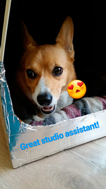 And don't forget great snaps of my Studio Assistant!