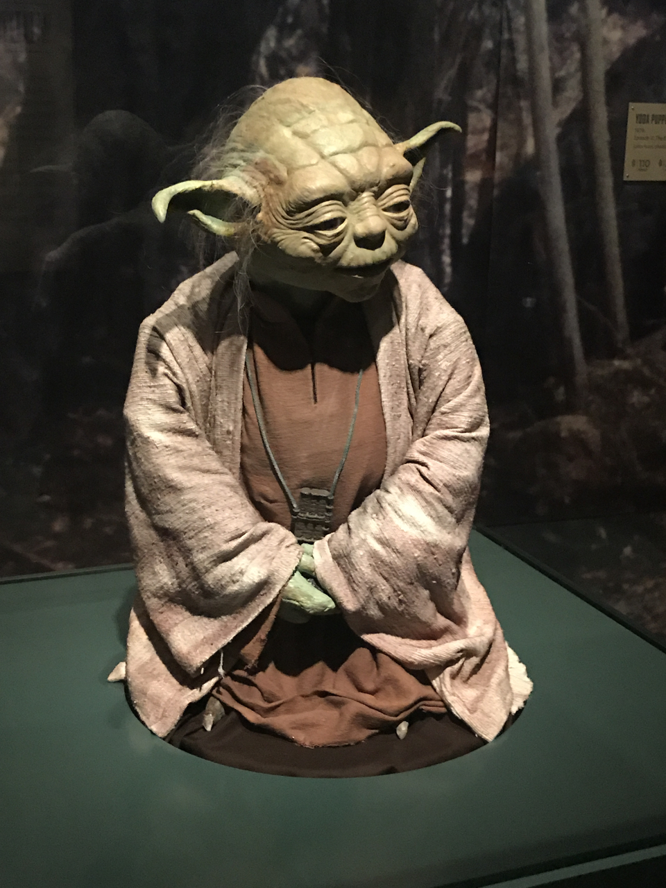 Yoda's in the House! Part of the Star Wars: Power of the Costume exhibit