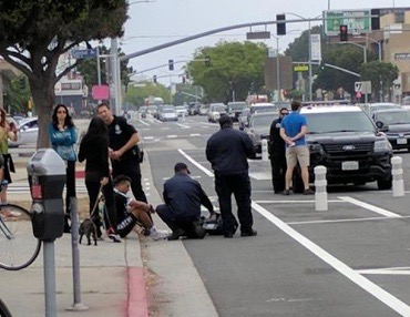 "Another cyclist down in the so-called ""safer"" bike lane on Venice Blvd."