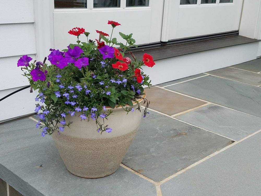 container planting (2).jpg