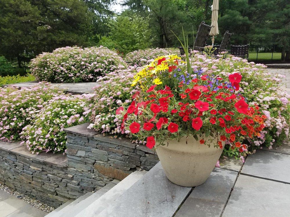 estate maintenance summer pots planted.jpg