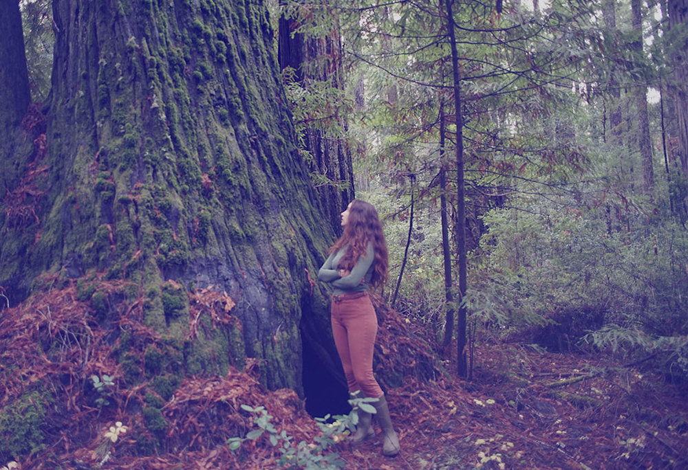 for the wild -