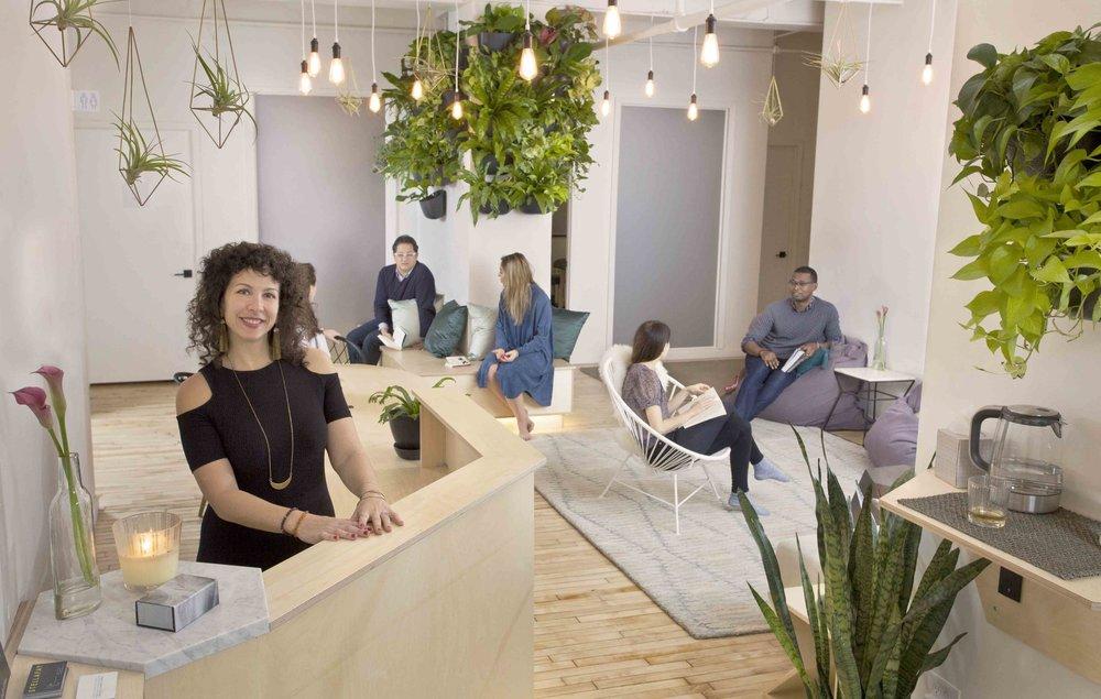 city wellness collective -