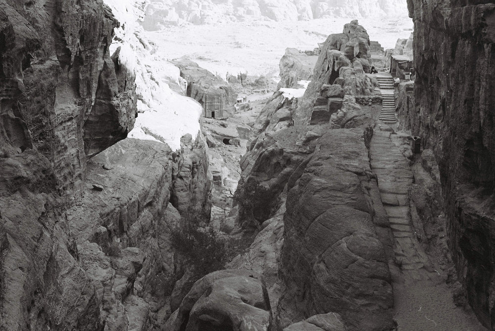 A stone staircase nestled within the ancient city of Petra.