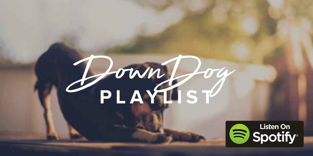 downDog_PLAYLIST.png