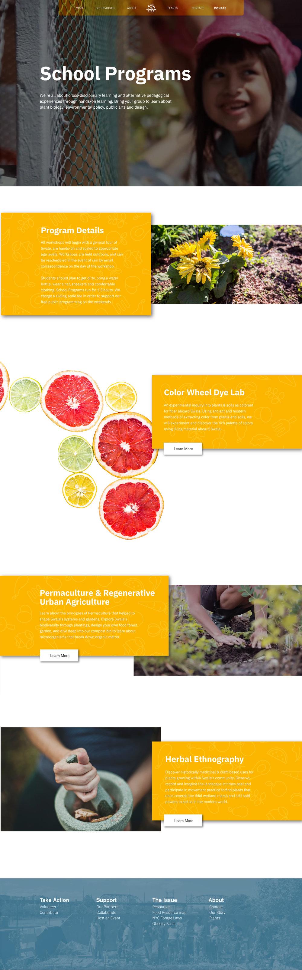 Swale-website-02.jpg