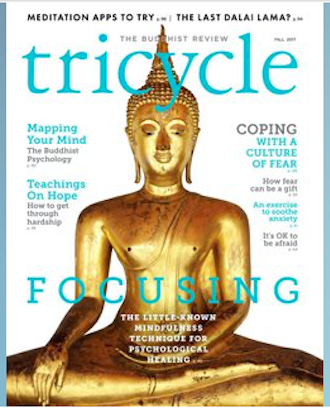 Focusing: A Practice to Complement Meditation  -  Tricycle Magazine , Fall 2017