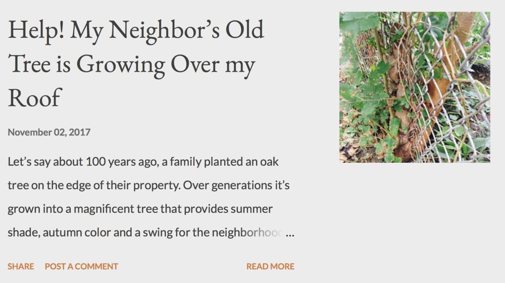Wasserblawg tree blog.png
