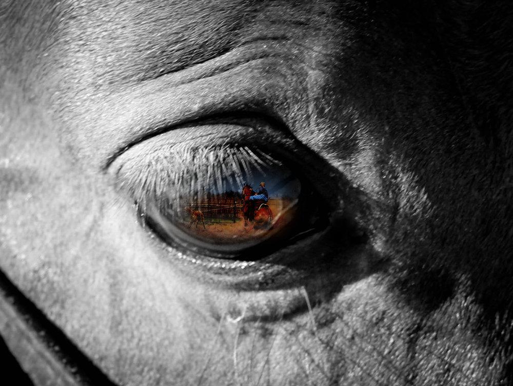 Blackwithcolor eye close up.jpg