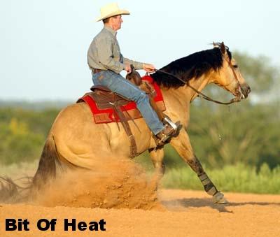 heat1_1.jpg