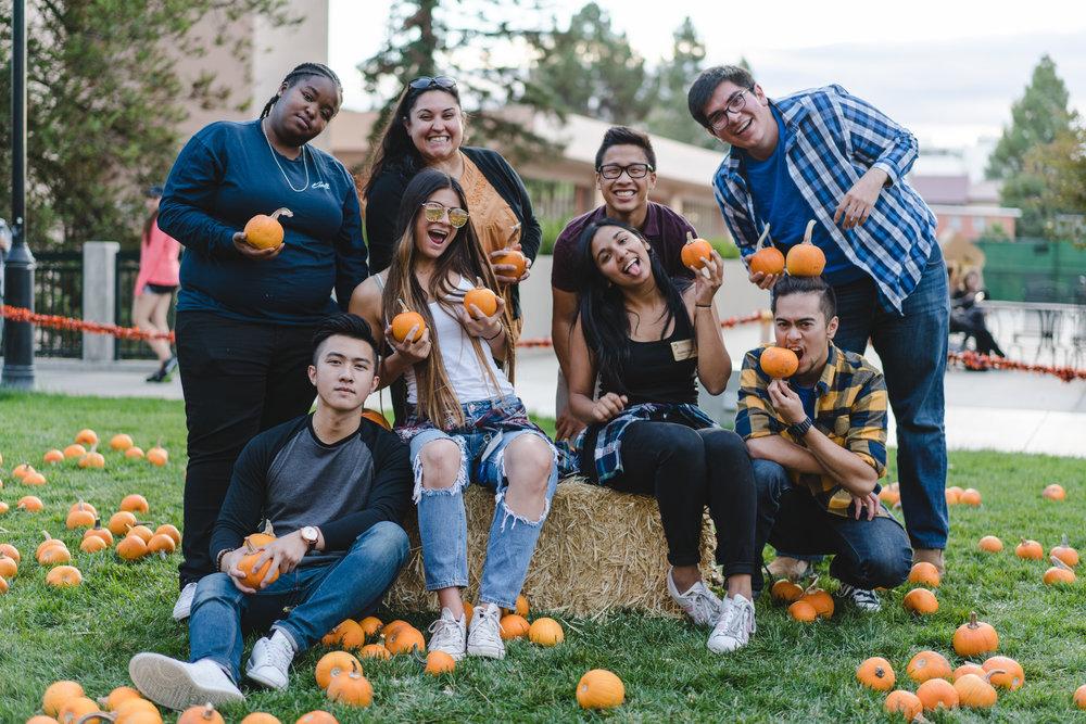 pets & pumpkins-10.jpg