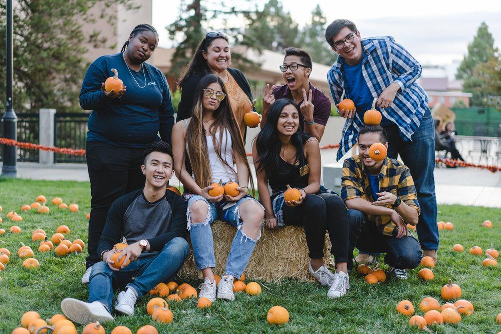 pets & pumpkins-11.jpg
