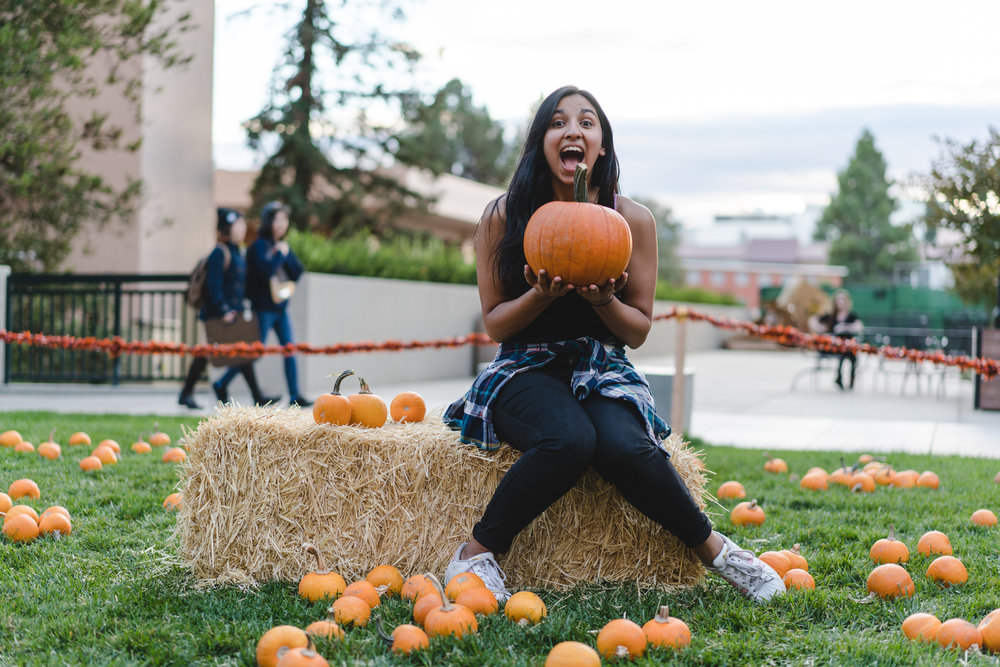 pets & pumpkins-15.jpg