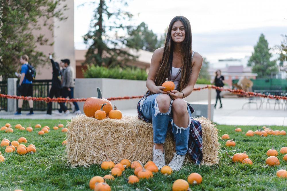pets & pumpkins-16.jpg