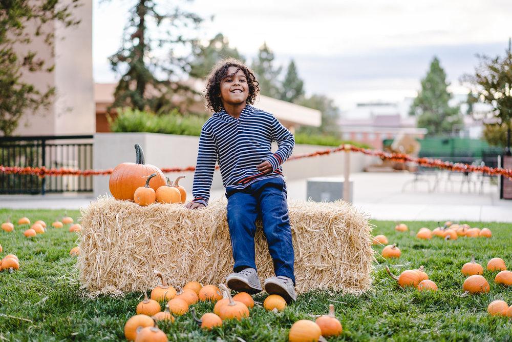 pets & pumpkins-20.jpg