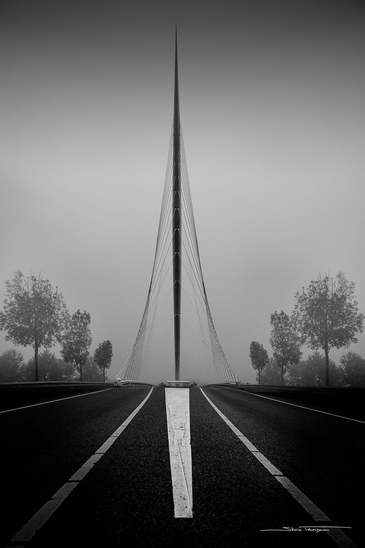 Hoofddorp 01 Harp Bridge