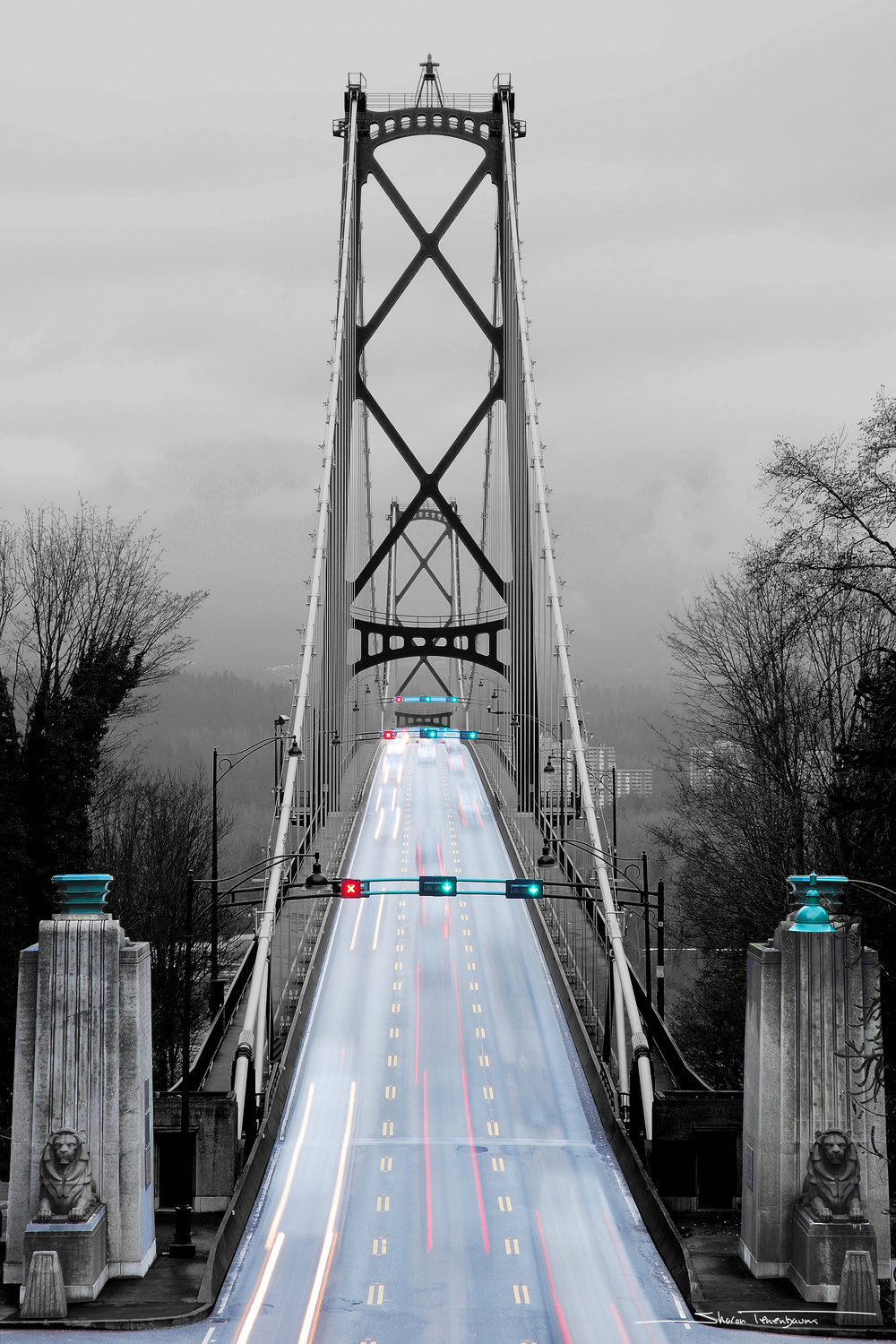 Lions' Gate Bridge Portrait