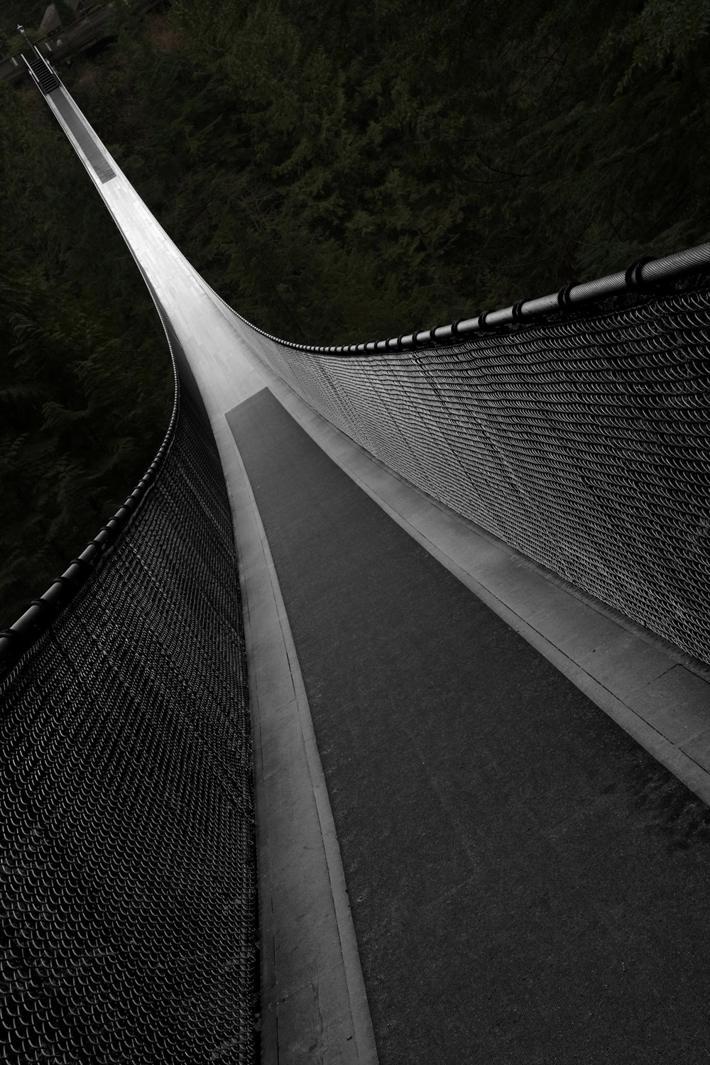 Figure 2 Capilano Bridge - Rotated