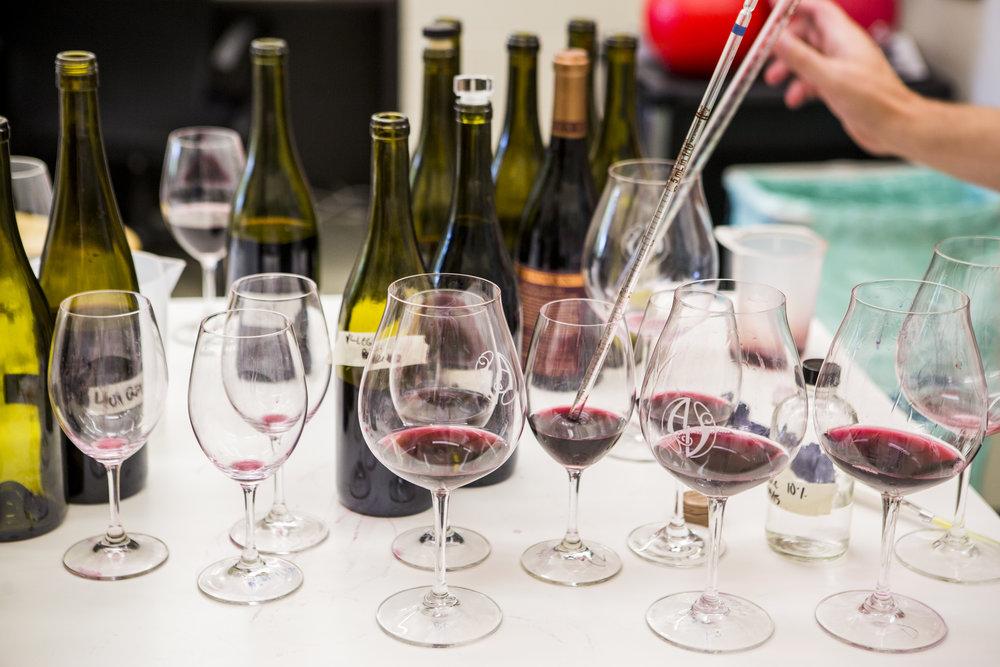 Winemaking at Adelsheim Vineyard