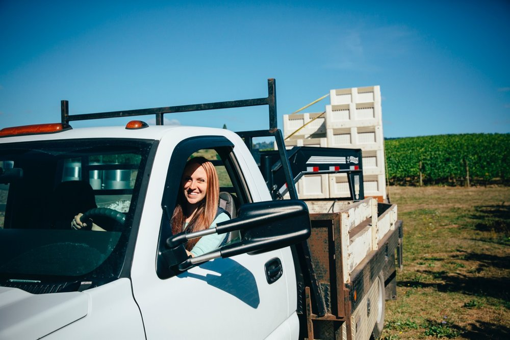 Woman Driving Truck during Grape Harvest at Adelsheim