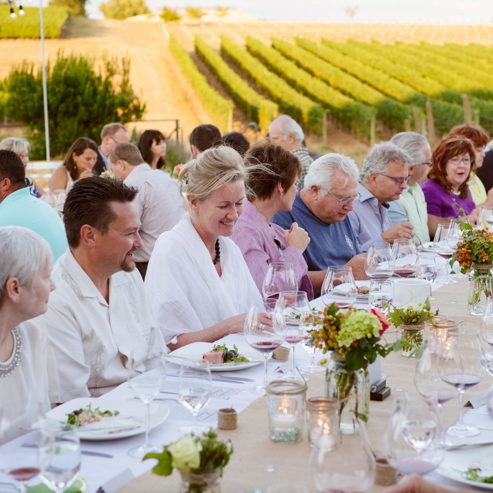 Wine Event - Lunch in the Vineyard