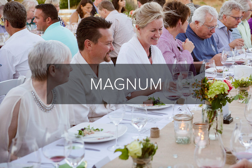 - Magnum bottles for entertainers who love exceptional Pinot noir.Red Wine1 bottle$120 - $200