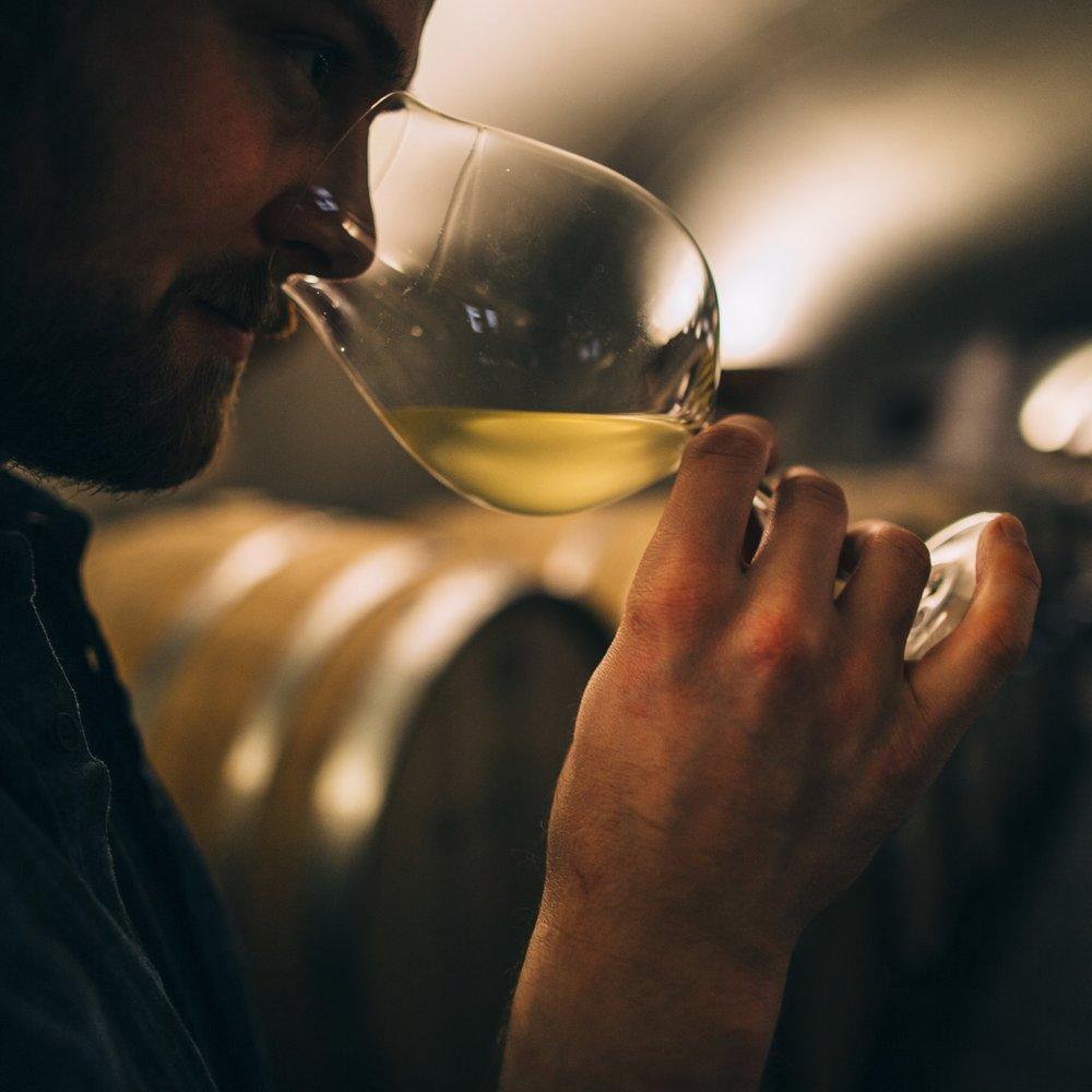 Wine Event - Wine 101