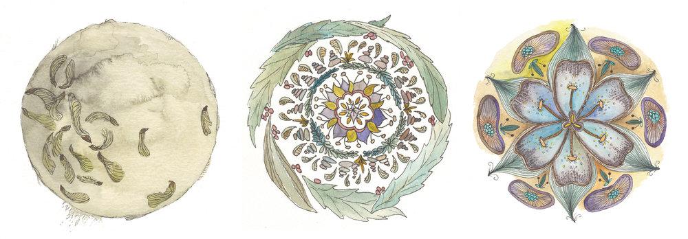 inspired-by-botanical-mandalas.jpg