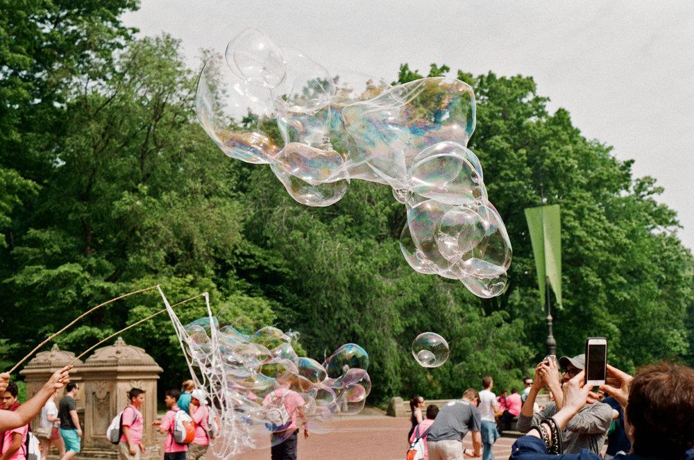 Central Park Bubbles 4.jpg