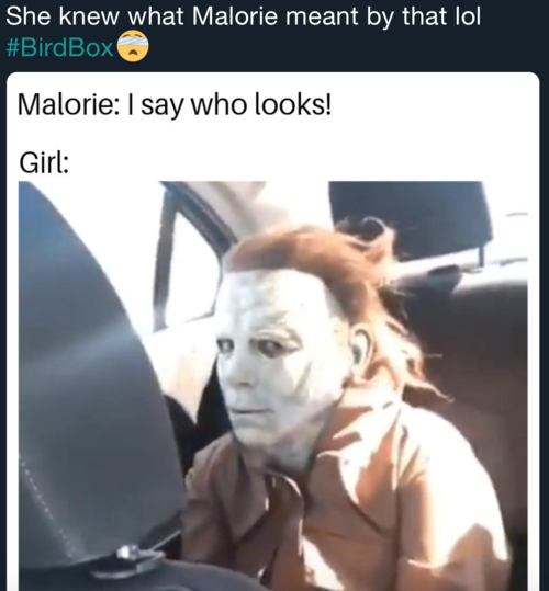 The Best Memes From Bird Box Pierre Into My Life