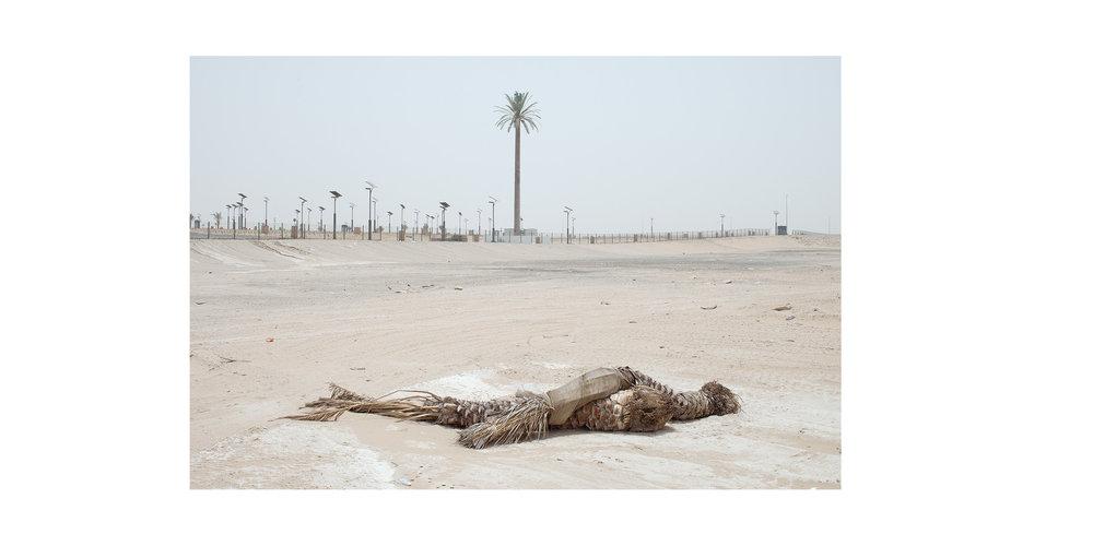 DesertDreams-11.jpg