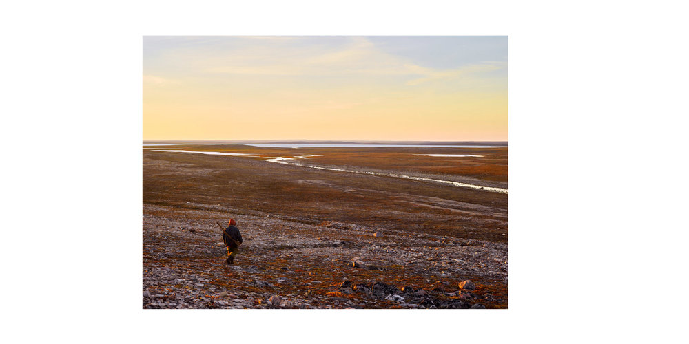 ArcticFront-01.jpg