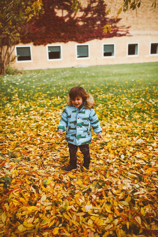 fall_cranbrook_hugolovestiki13.jpg