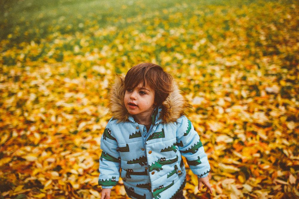 fall_cranbrook_hugolovestiki15.jpg