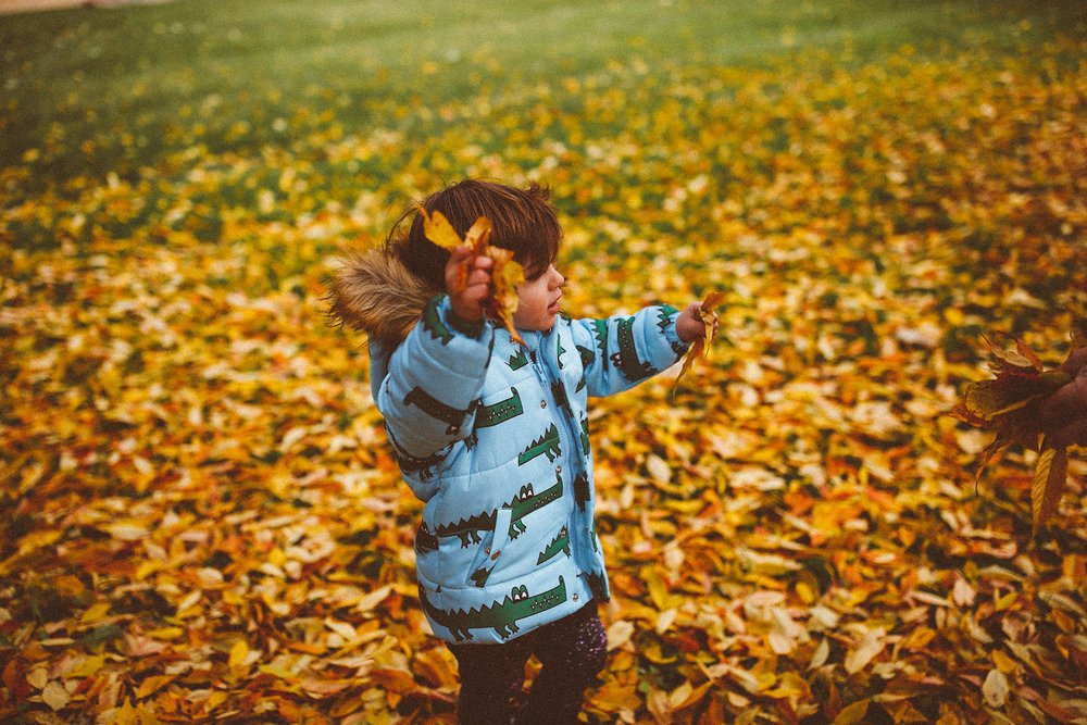 fall_cranbrook_hugolovestiki17.jpg