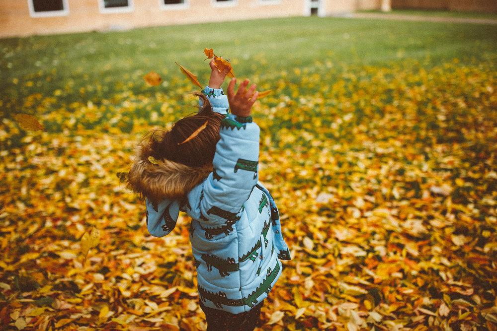 fall_cranbrook_hugolovestiki18.jpg