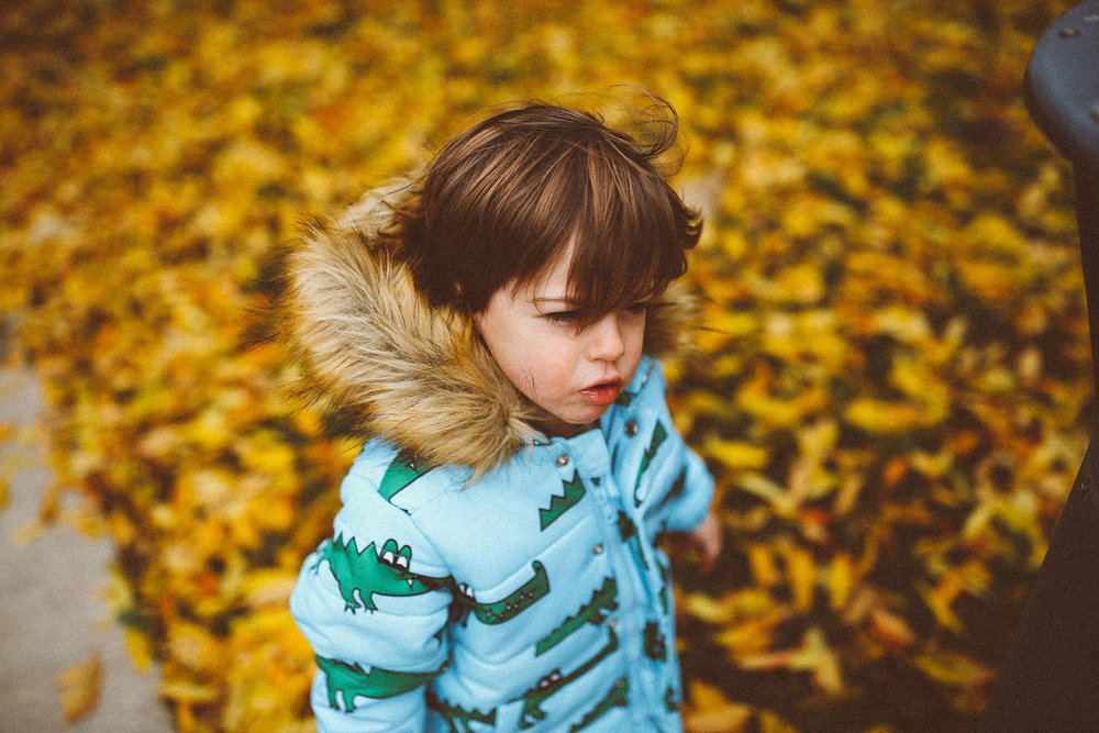 fall_cranbrook_hugolovestiki21.jpg